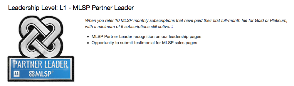 Leadership-Level-L1 - MLSP-Partner-Leader