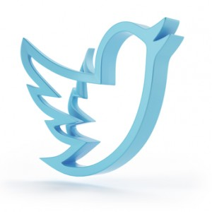 New Social network blue bird symbol