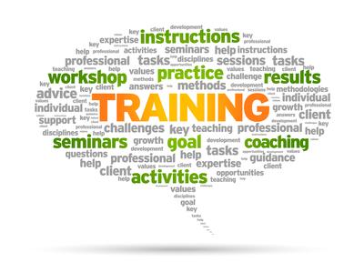 2013 leadership skills training program for chief residents