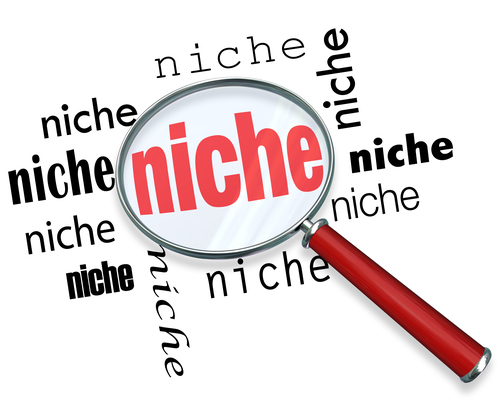 Finding a Targeted Niche - Magnifying Glass